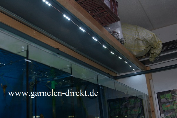 LED-Module in der Aquarienanlage
